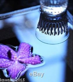 Whisky Crystal tumbler Suntory HIBIKI Baccarat 24 face cut Shot Glass LImited JP